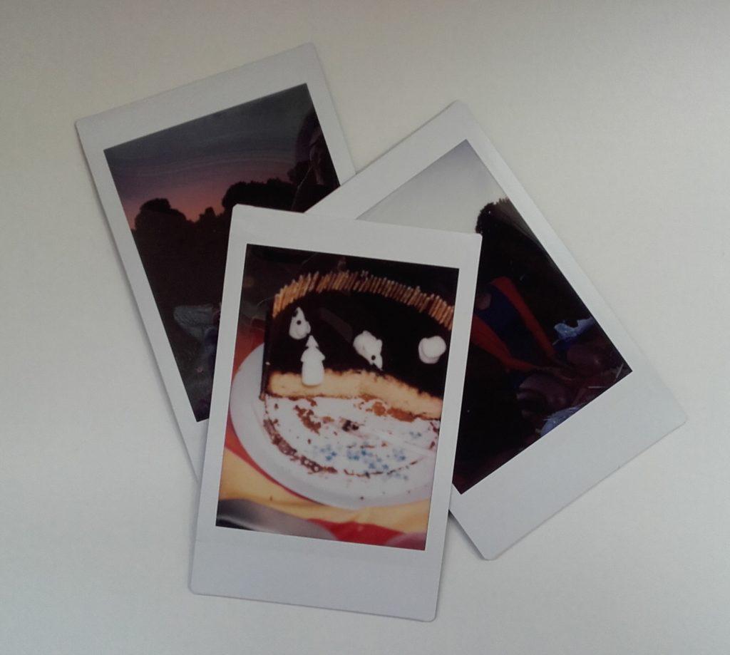 Polaroïd du pique-nique, avec le gâteau-souris au milieu