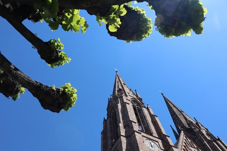 Eglise à deux clochers vue en contre-plongée, avec les moignons d'arbres cogneurs