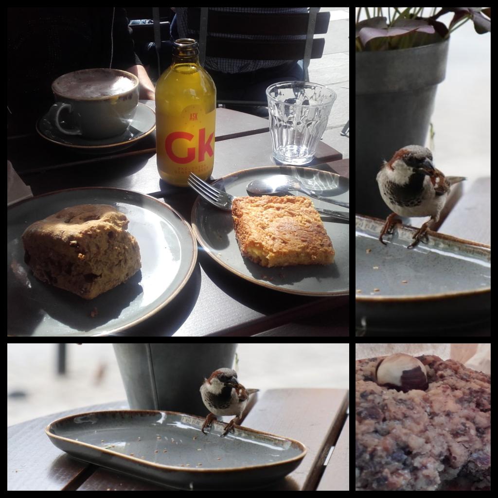 Quadrillage de photos représentant les délices mentionnés en dessous… et l'oiseau venu picorer les miettes.