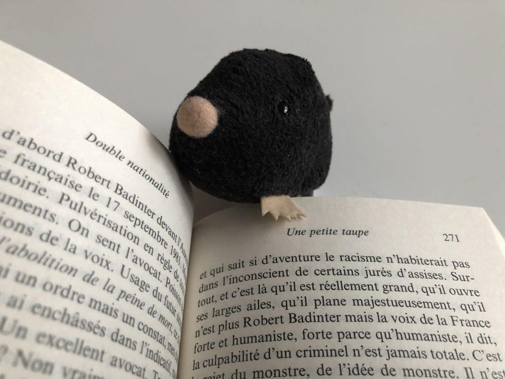 Petite taupe en peluche devant le livre ouvert au chapitre Petite taupe